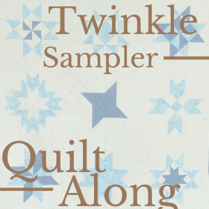 blue and white star sampler quilt with title.